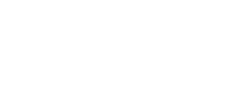 The Youth Project Logo